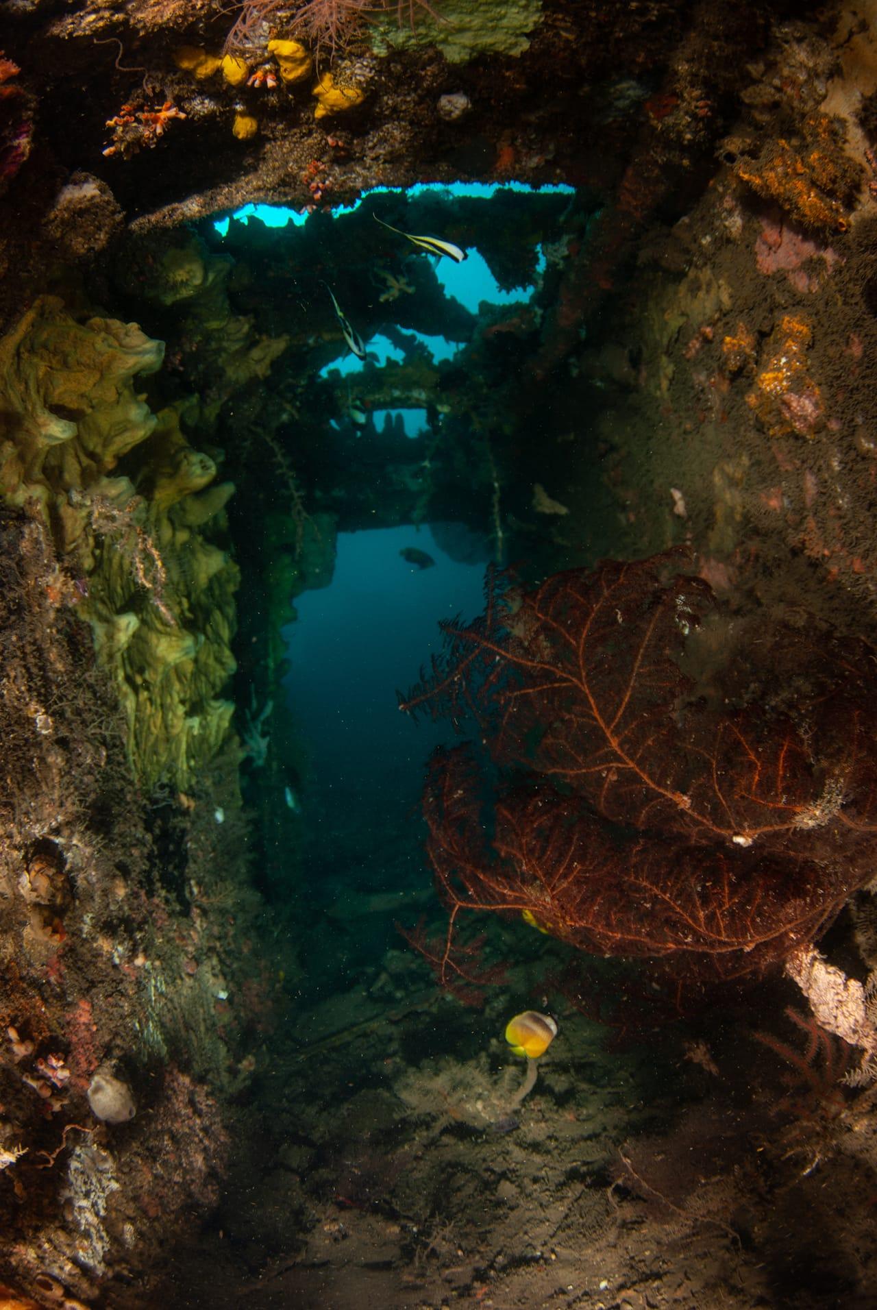 The Molas Shipwreck