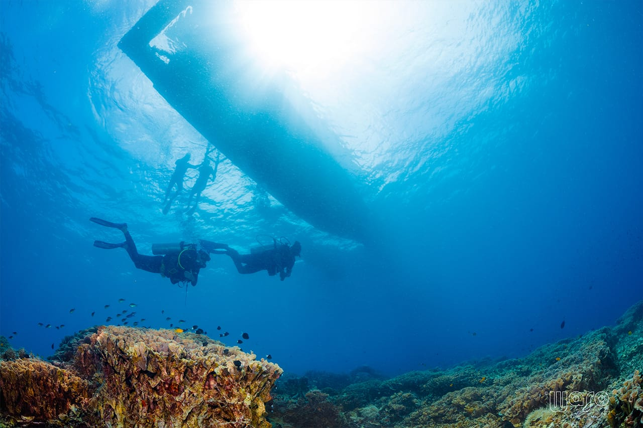 Divers at Bunaken National Marine Park in North Sulawesi