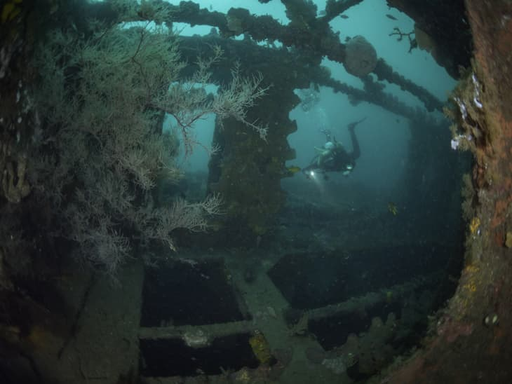 The Molas Shipwreck near Manado - © Duiken
